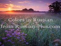 Color names in Russian
